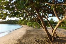 Grenada Villa Rental - Coral Cove