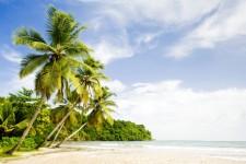 Grenada Villa - A Typical tropical beach area